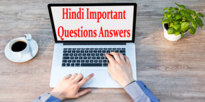 Hindi important questions answers